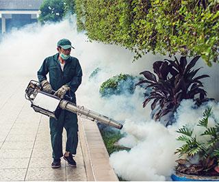 Pest Control Home Services